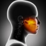 Das menschliche Kiefergelenk